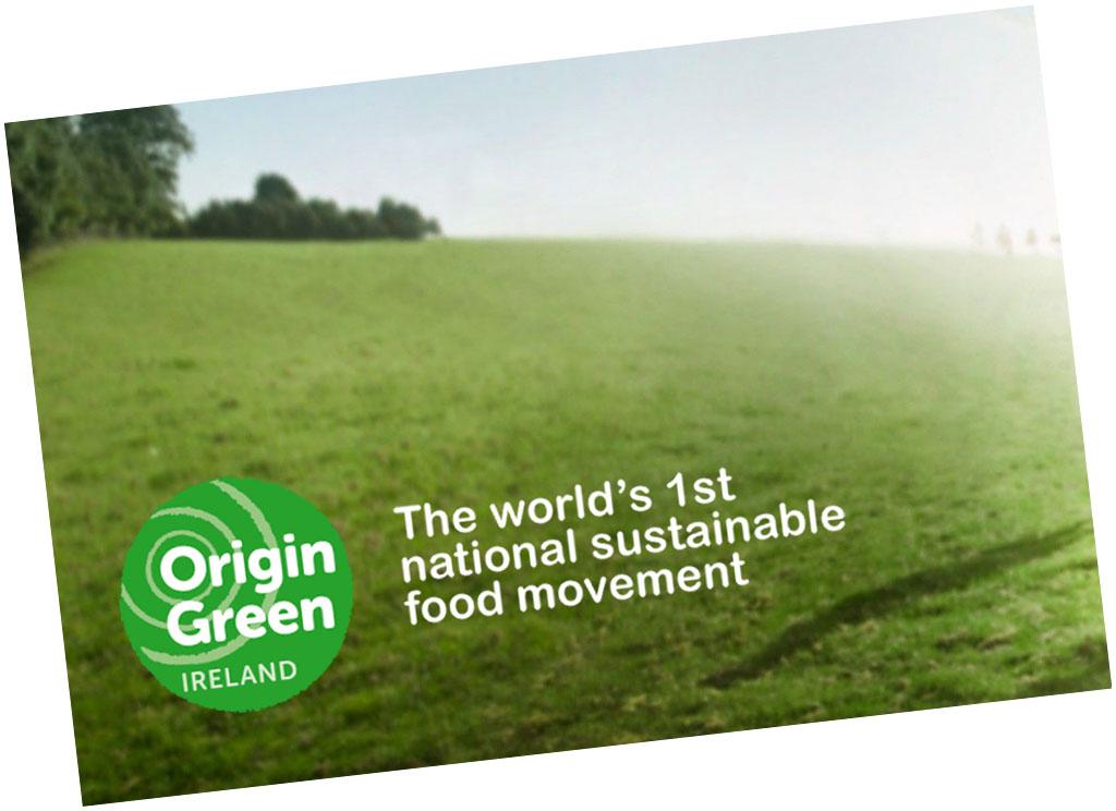 ribworld Origen verde